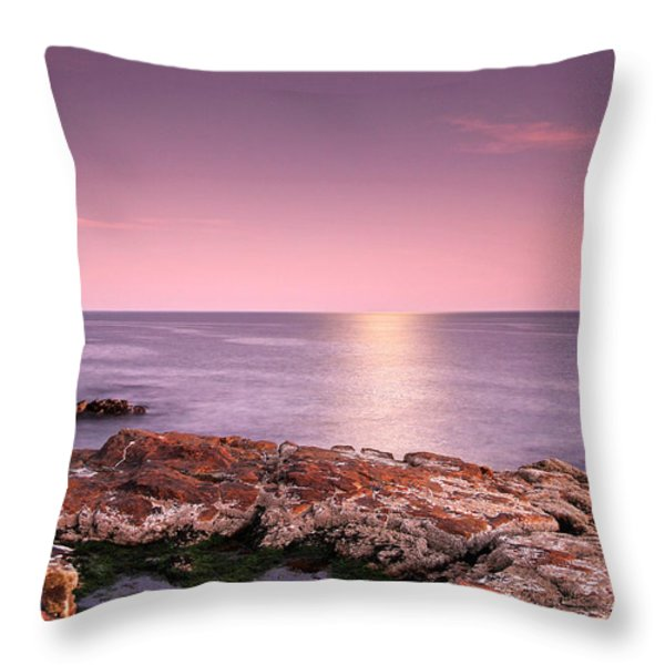 Full Moon Reflection Throw Pillow by Juergen Roth