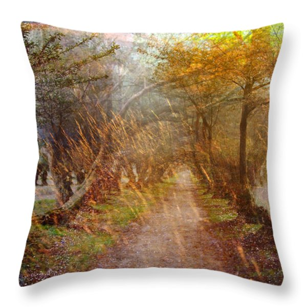 Funky Sunset 2 Throw Pillow by Marty Koch