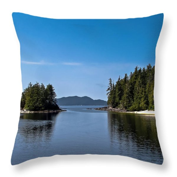 Fury Cove Throw Pillow by Robert Bales