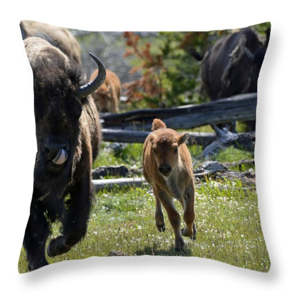 Gallopin Bison Mom And Calf Throw Pillow by Bruce Gourley