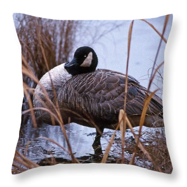 GANDER Throw Pillow by Skip Willits