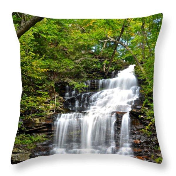 Ganoga Falls Ricketts Glen Throw Pillow by Frozen in Time Fine Art Photography