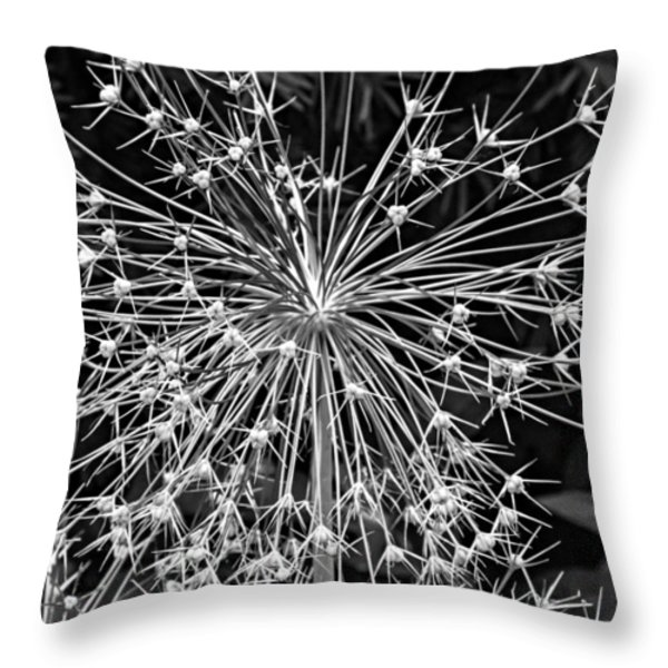 Garden Fireworks 2 Monochrome Throw Pillow by Steve Harrington