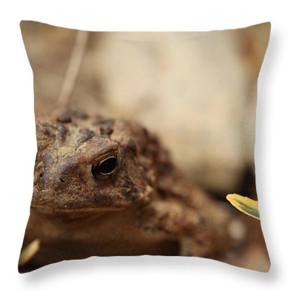 Garden Frog Throw Pillow by Karol Livote