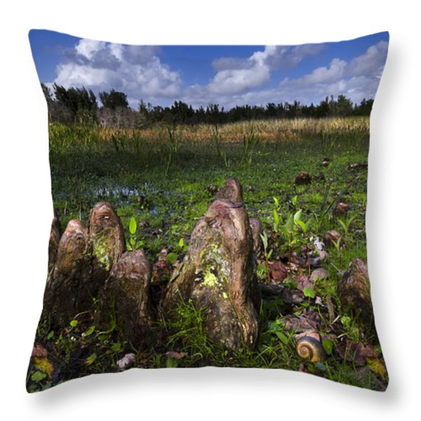 Garden In The Glades Throw Pillow by Debra and Dave Vanderlaan