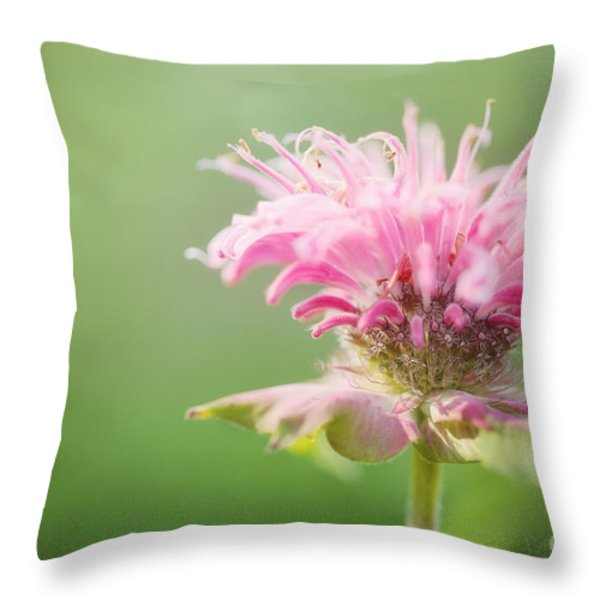 Garden Jester Throw Pillow by Reflective Moments  Photography and Digital Art Images