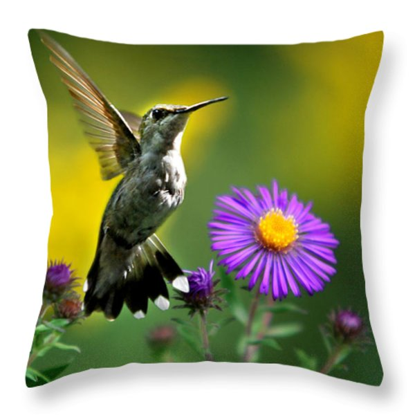 Garden Lights Throw Pillow by Christina Rollo