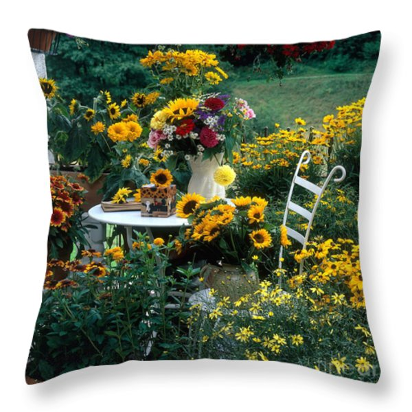 Garden With Table And Chair Throw Pillow by Hans Reinhard