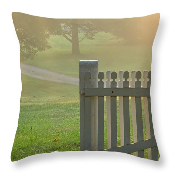 Gate in Morning Fog Throw Pillow by Olivier Le Queinec