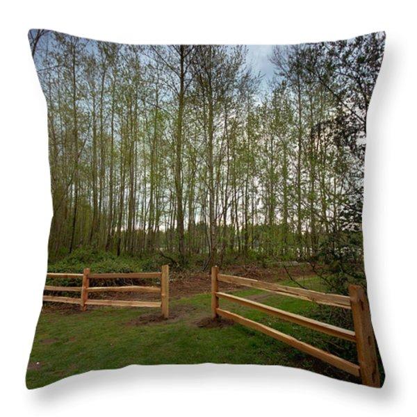 Gates To The Birch Wood Throw Pillow by Eti Reid