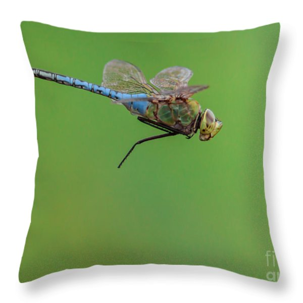 Gear Malfunction Throw Pillow by Robert Frederick