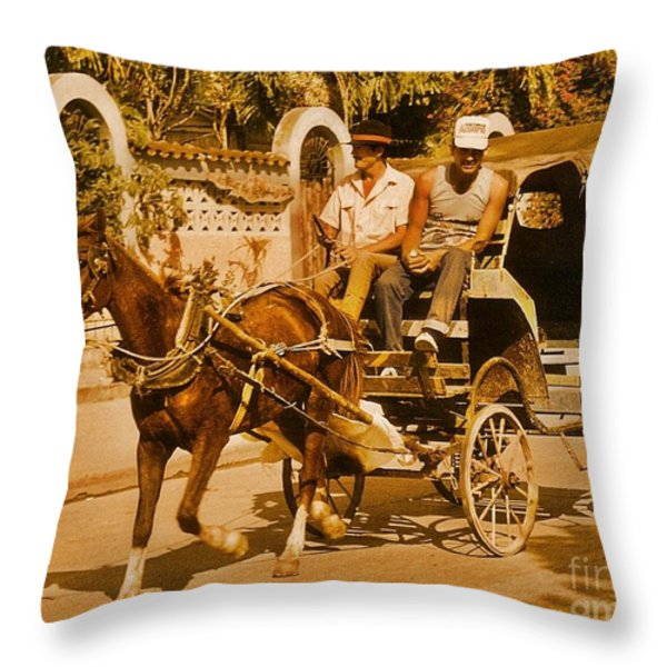 Gee Haw Throw Pillow by John Malone