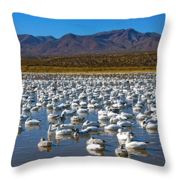 Geese at Bosque Del Apache Throw Pillow by Kurt Van Wagner