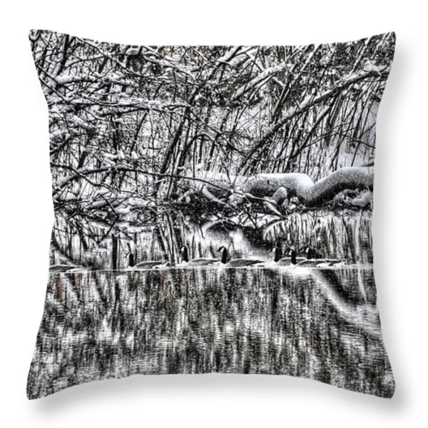 Geese On Pond Black And Wihite Throw Pillow by Dan Friend