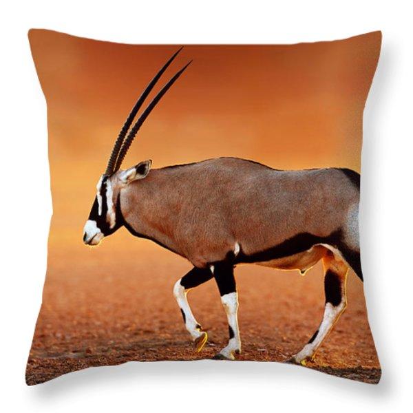 Gemsbok On Desert Plains At Sunset Throw Pillow by Johan Swanepoel