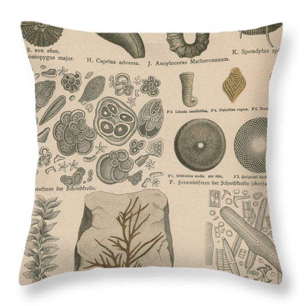 Geology And Paleontology 1886 Throw Pillow by Science Source