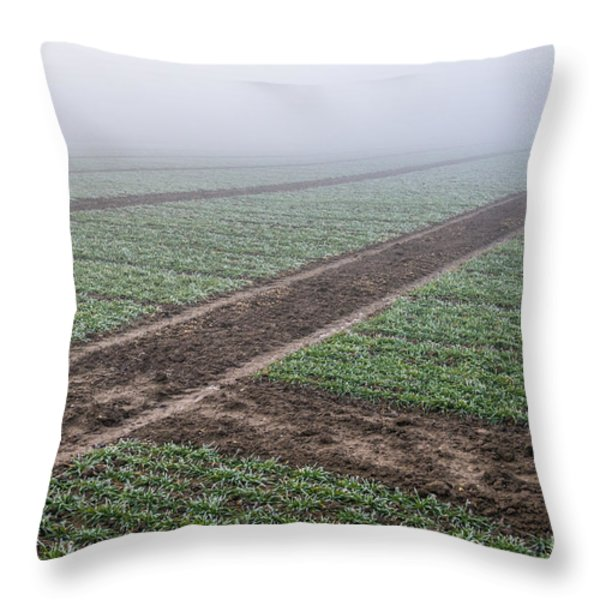 Geometry In Agriculture Throw Pillow by Hannes Cmarits