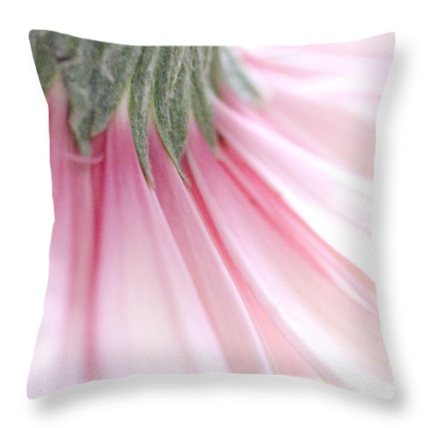Gerbera  Throw Pillow by Andrea Kollo