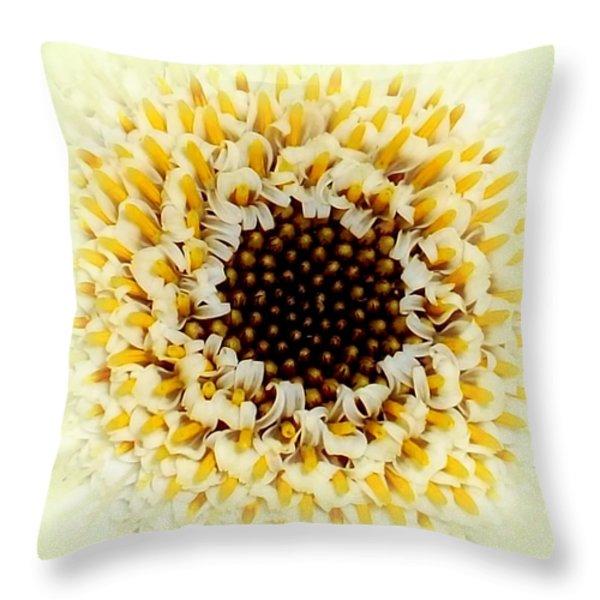 Gerbera Closeup Throw Pillow by The Creative Minds Art and Photography