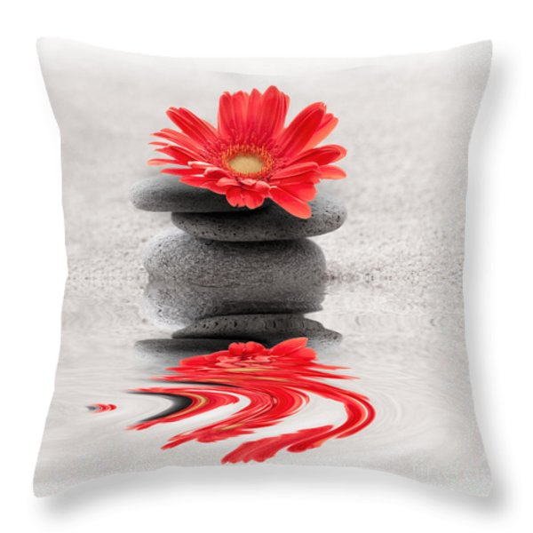 Gerbera reflection Throw Pillow by Delphimages Photo Creations