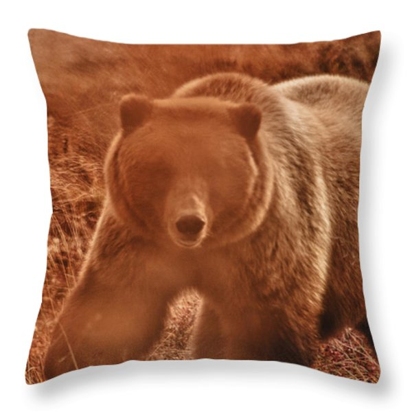 Getting a bit too close Throw Pillow by Jeff Folger