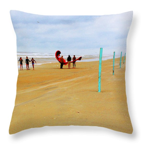 Getting Ready to 'Fly' Throw Pillow by CHAZ Daugherty