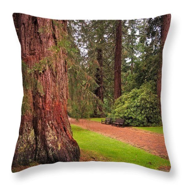 Giant Sequoia Or Redwood. Benmore Botanical Garden. Scotland Throw Pillow by Jenny Rainbow