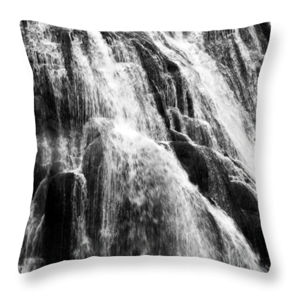 Gibbon Falls Throw Pillow by Bill Gallagher