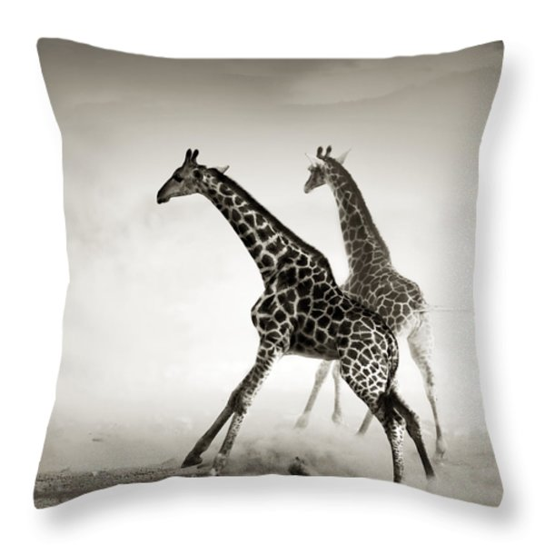 Giraffes Fleeing Throw Pillow by Johan Swanepoel