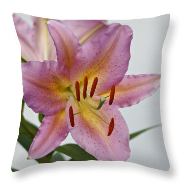 Girosa Lily Throw Pillow by Sandy Keeton