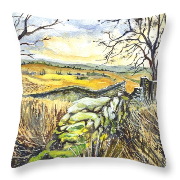 Gisburn Forest Lancashire Uk Throw Pillow by Carol Wisniewski