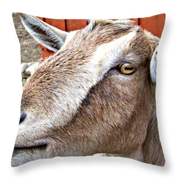 Give Us A Kiss Throw Pillow by Barbara S Nickerson