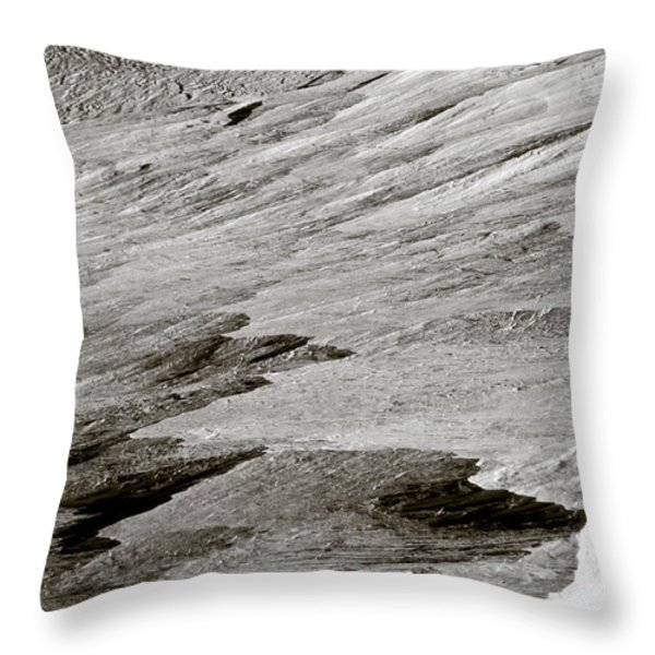 Glacier Throw Pillow by Frank Tschakert