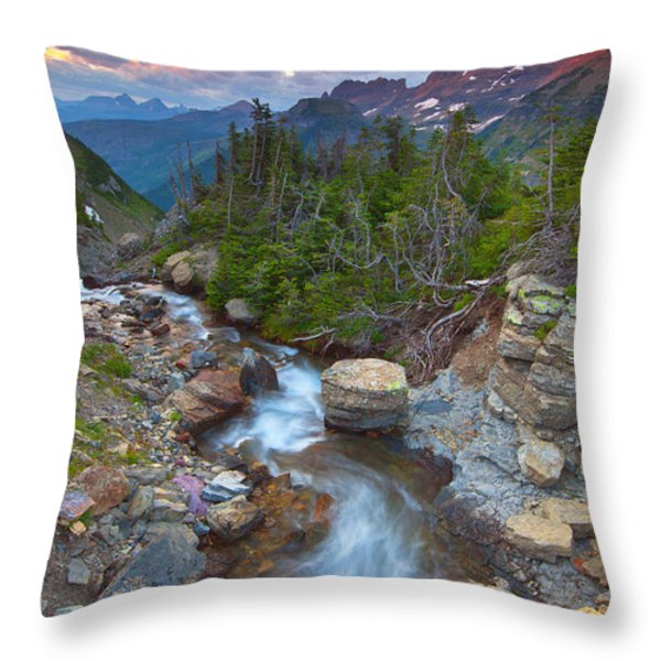 Glaciers Wild Throw Pillow by Darren  White