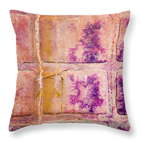 Glass Crossings 3 Throw Pillow by Carol Leigh