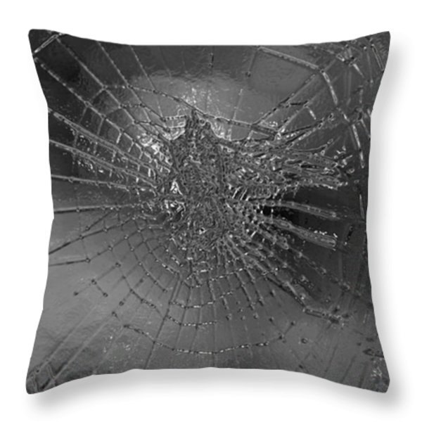 Glass Spider Throw Pillow by Carol Lynch
