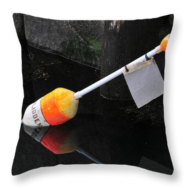 Glidden Throw Pillow by Mike Martin