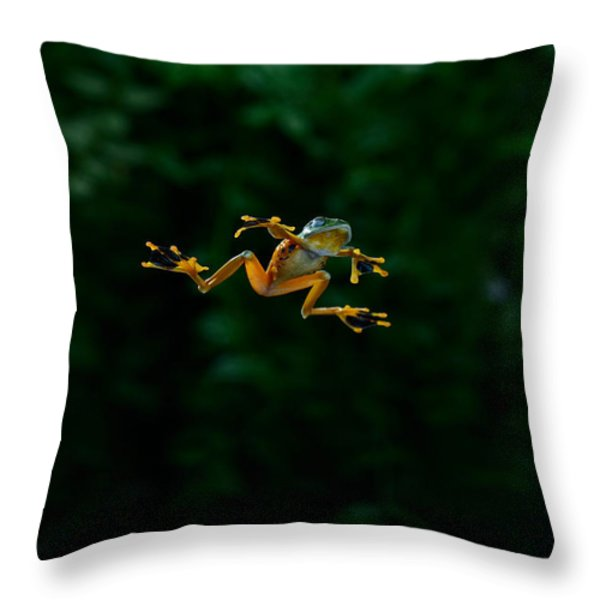 Gliding Frog In Flights Throw Pillow by Scott Linstead