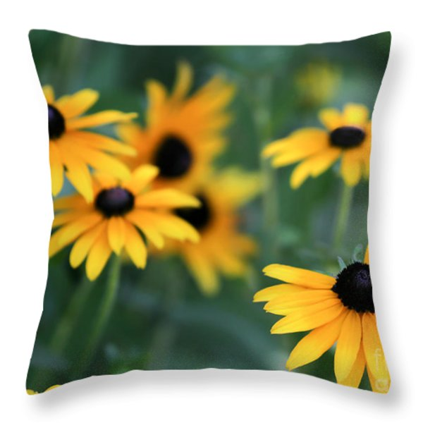 Glorious Garden of Black Eyed Susans Throw Pillow by Sabrina L Ryan