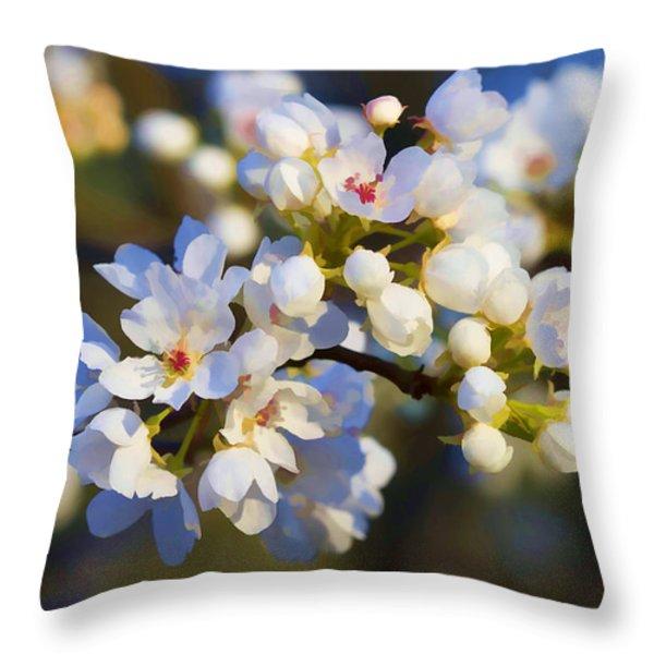 Glorious Light Throw Pillow by Kathy Clark