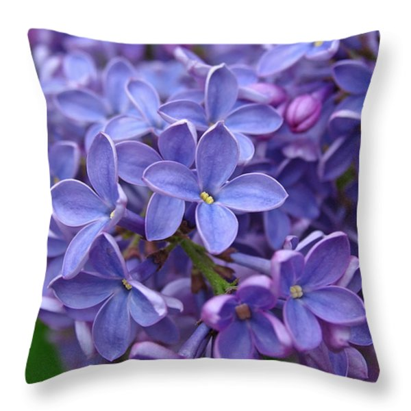 Glorious Lilac Bloom Throw Pillow by Juergen Roth