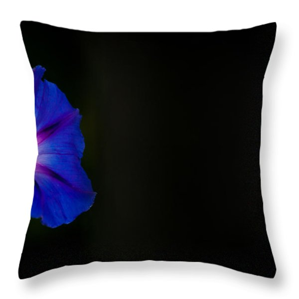 Glorious Simplicity Throw Pillow by Cheryl Baxter