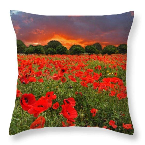 Glorious Texas Throw Pillow by Lynn Bauer