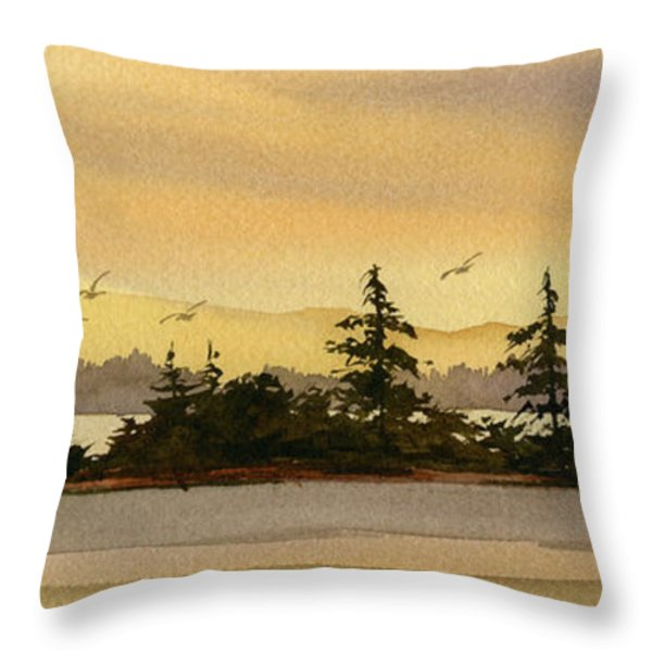 Glow Of Dawn Throw Pillow by James Williamson