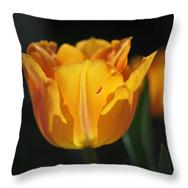 Glowing Tulips Throw Pillow by Rona Black