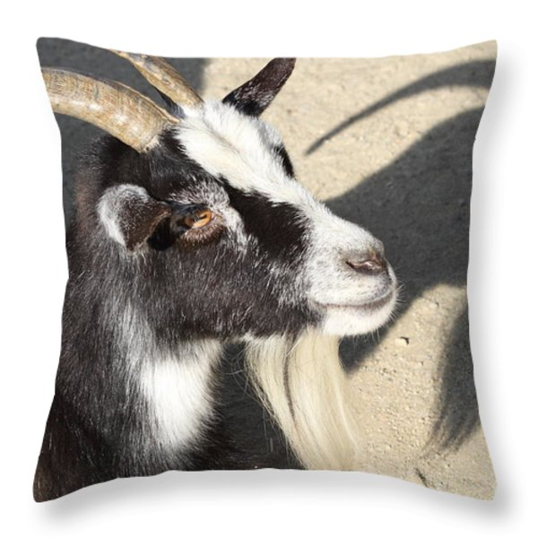 Goat 7d27402 Throw Pillow by Wingsdomain Art and Photography