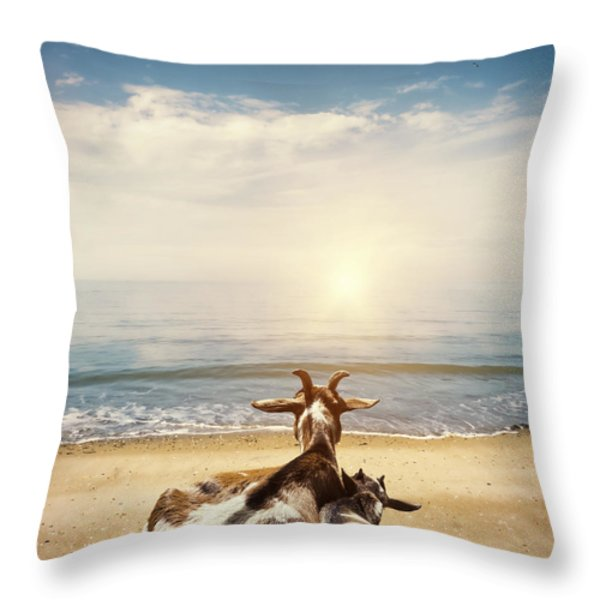 Remember This Day Throw Pillow by Wim Lanclus