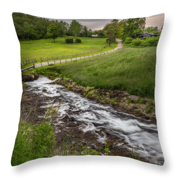 Goin With The Flow Throw Pillow by Bill  Wakeley