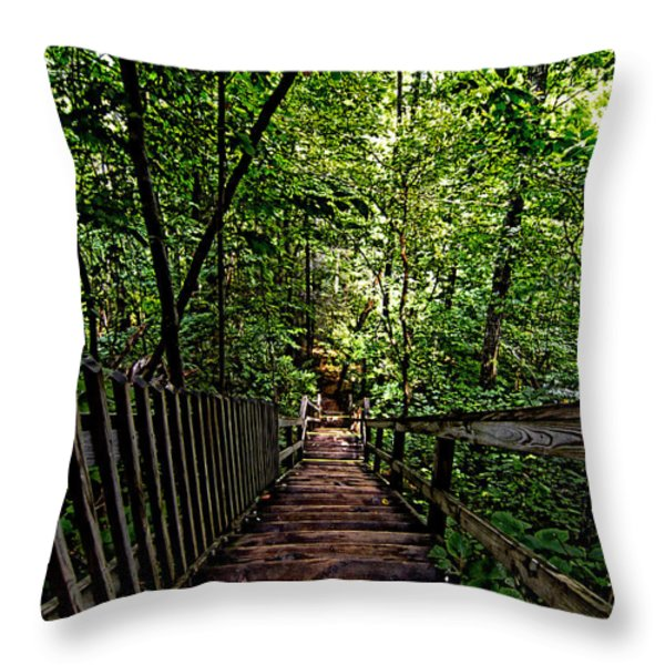 Going Down... Throw Pillow by John Dauer