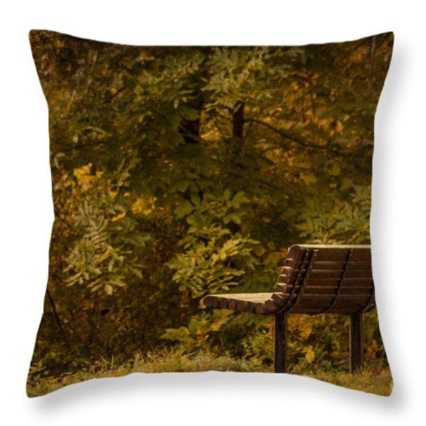 Golden Autumn Solitude Throw Pillow by Janice Rae Pariza